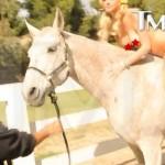 Kate Upton - Horse 06