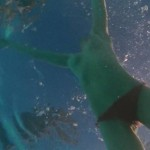 Amanda Seyfried- Lovelace 07
