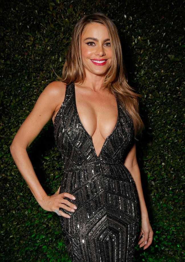 Sofia Vergara - Golden Globes 2014 - 01