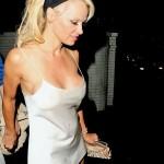 Pamela Anderson - nipslip 06